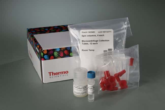 Thermo Scientific™DyLight™ 680-4xPEG Amine-Reactive Dye and Kits