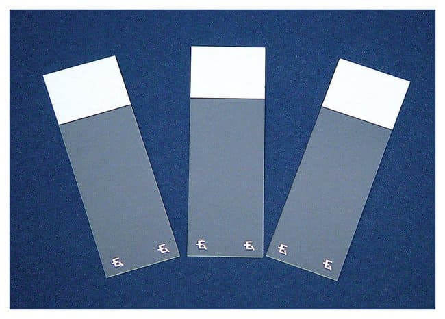 Fisherbrand Superfrost Excell Microscope Slides :Microscopes, Slides and