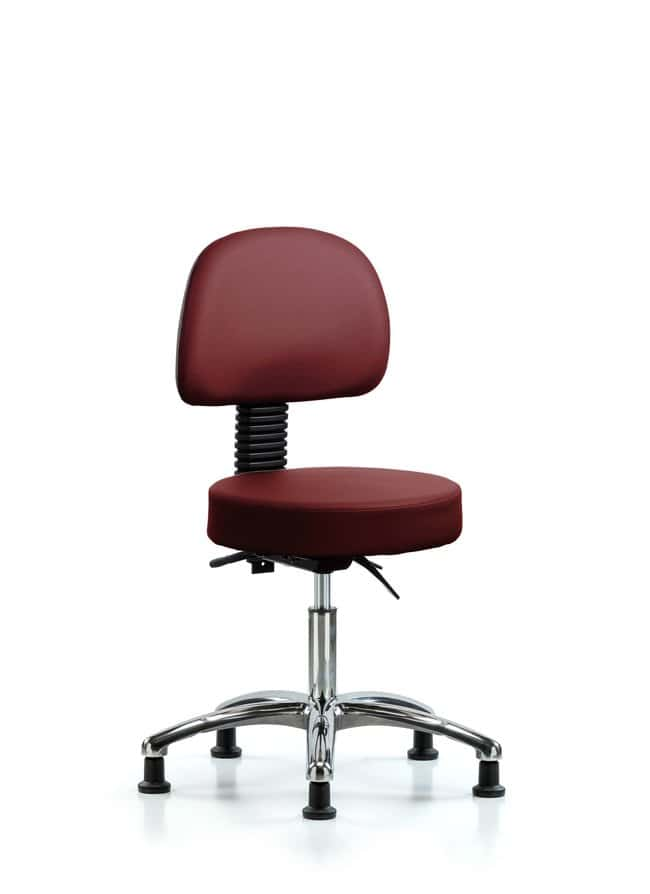 Fisherbrand Vinyl Stool with Back Chrome - Desk Height with Seat Tilt and