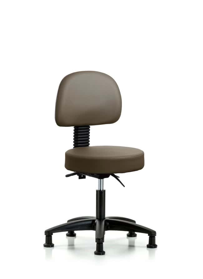 FisherbrandVinyl Stool with Back - Desk Height with Seat Tilt and Casters
