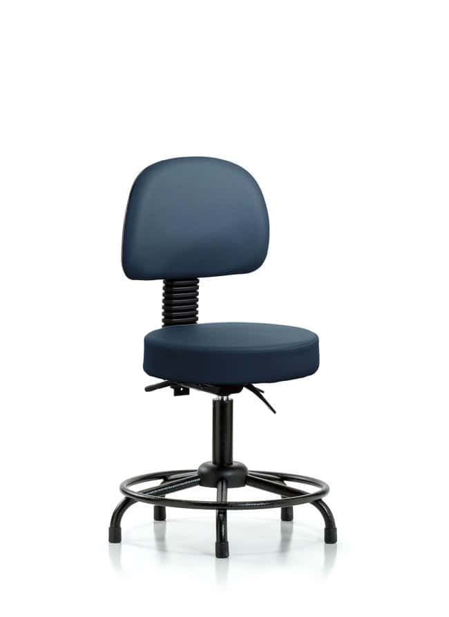 Fisherbrand Vinyl Stool with Back - Desk Height with Round Tube Base and