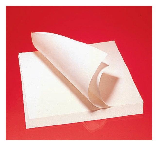 Cytiva (Formerly GE Healthcare Life Sciences)Qualitative Grade Plain Filter Paper Sheets - P8 Grade