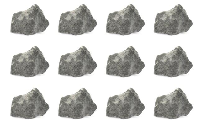 Eisco Greywacke Sedimentary Rock Specimen :Teaching Supplies:Earth and