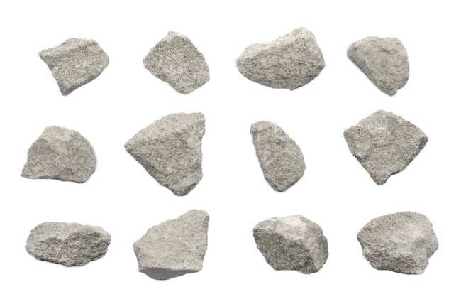 Eisco Oolitic Limestone Sedimentary Rock Specimen :Teaching Supplies:Earth