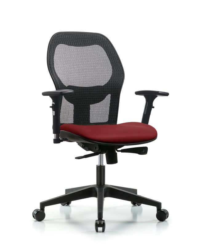FisherbrandExecutive Windrowe Mesh Back Chair with 3D Adjustable Arms,