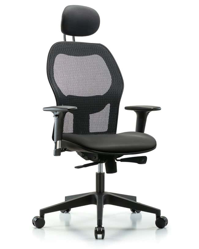 FisherbrandExecutive Windrowe Mesh Back Chair with Grade A Seat, Head Rest,