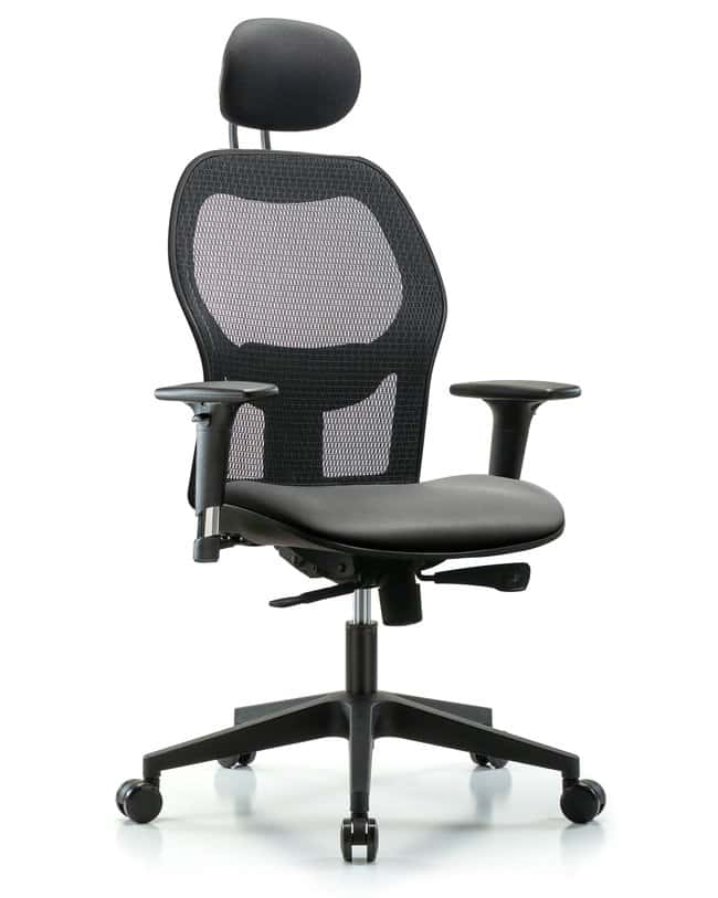 Fisherbrand Executive Windrowe Mesh Back Chair with Grade A Seat, Head