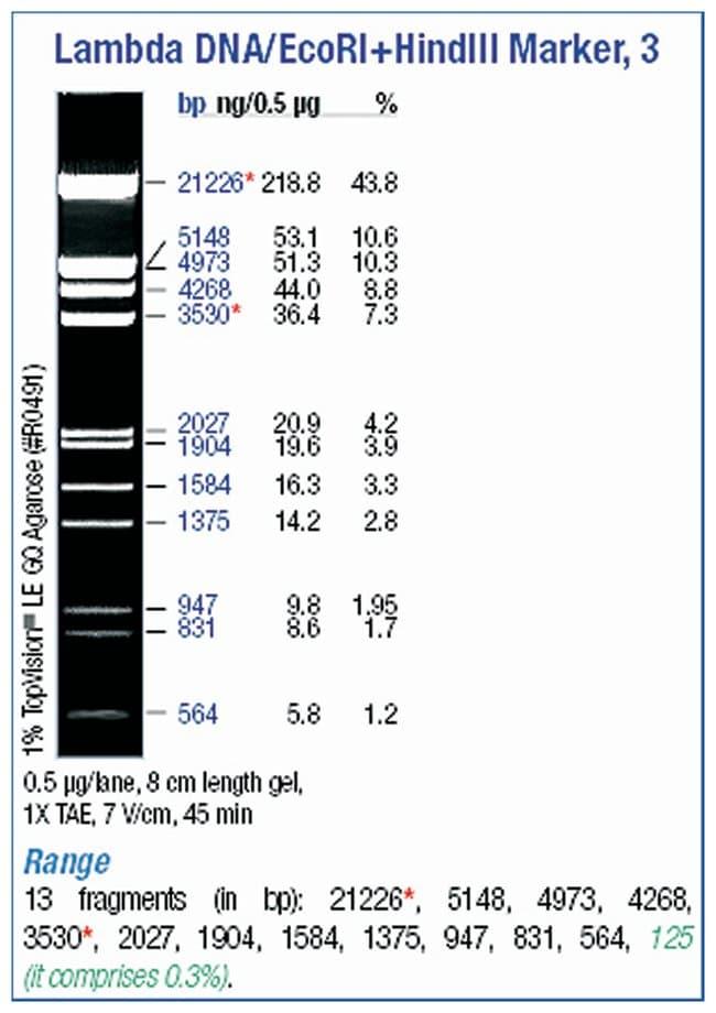 Thermo Scientific Lambda DNA/EcoRI plus HindIII Marker :Life Sciences:Biochemicals