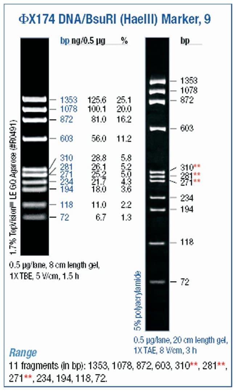Thermo Scientific phiX174 DNA/BsuRI (HaeIII) Marker :Life Sciences:Biochemicals