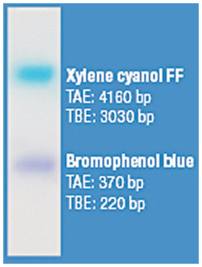 Thermo Scientific™6X DNA Loading Dye