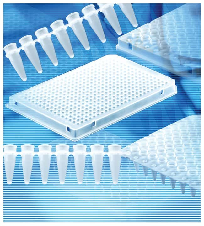 BRAND™ White 96-well PCR Plates 96 well; No Skirt; White BRAND™ White 96-well PCR Plates