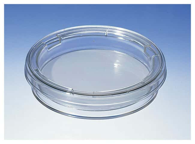Corning™ Costar™ Transwell™ Inserts and Dishes: Cell Dividers, Inserts, Scrapers and Utensils Cell Culture