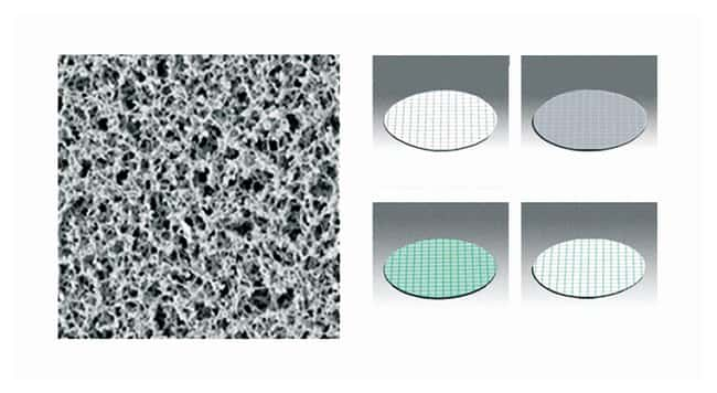 Sartorius™ Gridded Nonsterile Cellulose Nitrate Membrane Filters: 0.45μm Pore Size