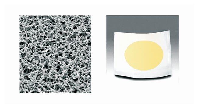 SartoriusNongridded Sterile Cellulose Membrane Filters Cellulose Nitrate; Pore size: 0.45μm; Dia.: 47mm SartoriusNongridded Sterile Cellulose Membrane Filters
