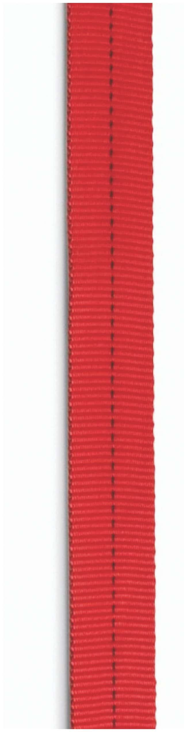 CMC Rescue 2 in. Tubular Nylon Webbing Red:Gloves, Glasses and Safety