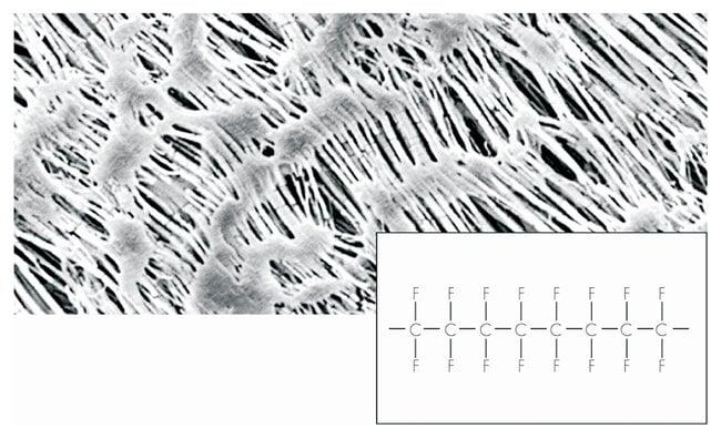 Sartorius PTFE (Polytetrafluorethylene) Membrane Filters Pore size: 0.45µm;