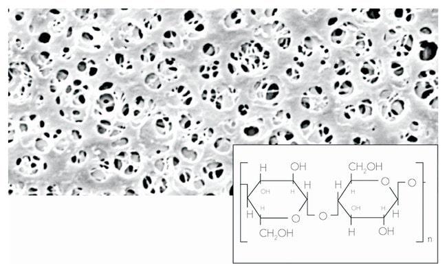 Sartorius Regenerated cellulose (RC) Membrane Filters Pore size: 0.45µm;