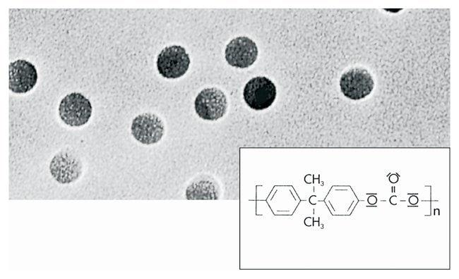 Sartorius Polycarbonate Track Etch Membrane Filters Pore size: 0.45µm;