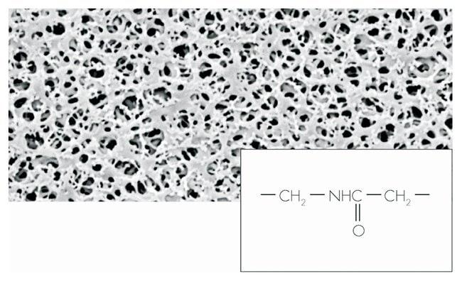 Sartorius™Filtros de membrana de poliamida (nailon) Pore size: 0.45μm; Dia.: 25mm; 100/Pk. Sartorius™Filtros de membrana de poliamida (nailon)