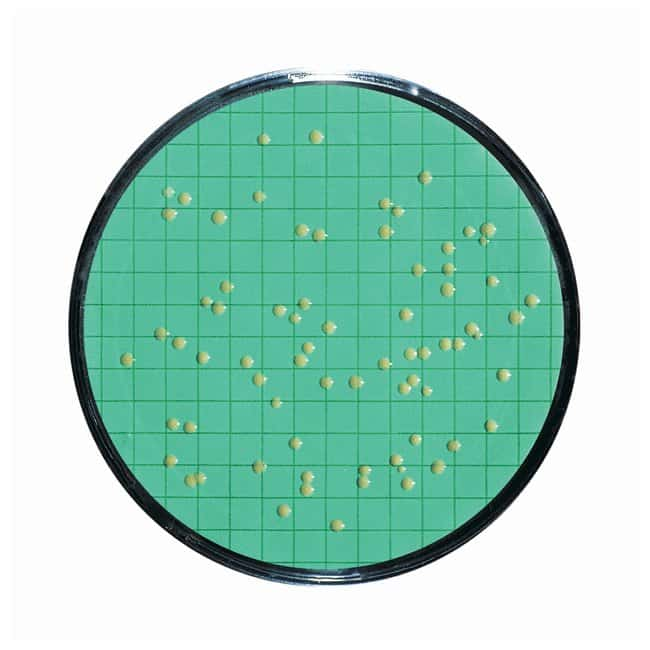 Sartorius™ Nutrient Pad Sets (NPS) 47mm diameter NPS type: Caso; Pore Size: 0.45μm Sartorius™ Nutrient Pad Sets (NPS) 47mm diameter