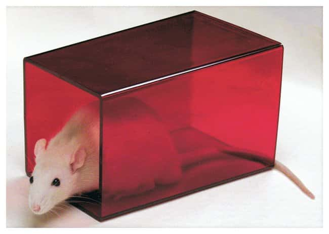 Bio-Serv Rat Retreats Rodent Enrichment Device, Certified:Animal Research:Animal