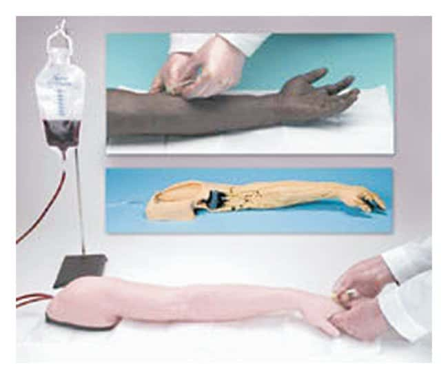 Nasco Life/form™ Advanced Venipuncture and Injection Arm
