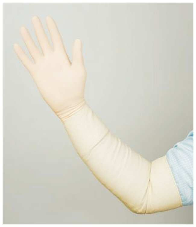 Ansell™Bioclean Maxima: Handschuhe für kontrollierte Umgebungen Kontrollierte Umgebungsbedingungen