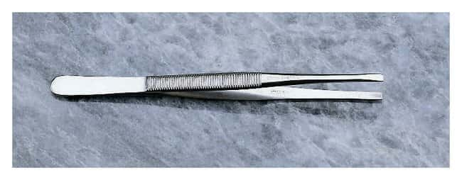 FisherbrandGeneral-Purpose Broad-Tipped Forceps Length: 4.5 in. (11.4cm):Surgical