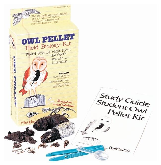 Owl Pellet Field Biology Kit - Teaching Supplies, Biology Classroom