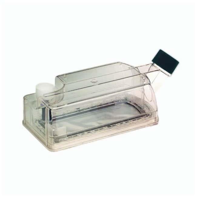Argos Technologies CELLine Bioreactor Flasks:Dishes, Plates and Flasks:Flasks