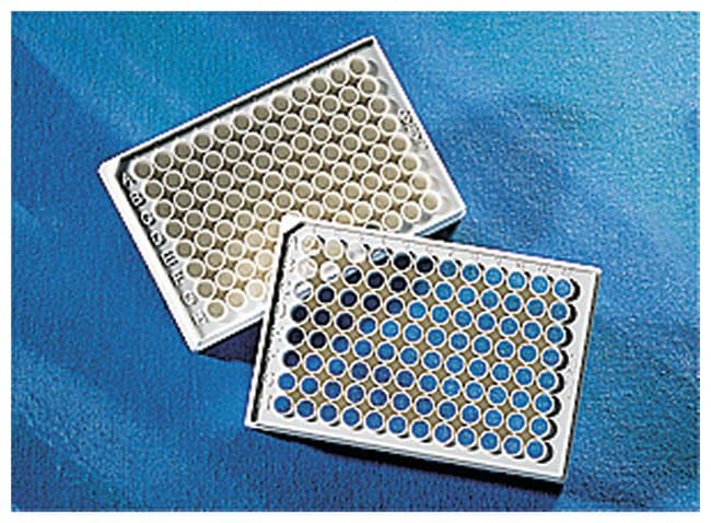 Corning™96-Well, Non-Treated, Flat-Bottom, Half-Area Microplate