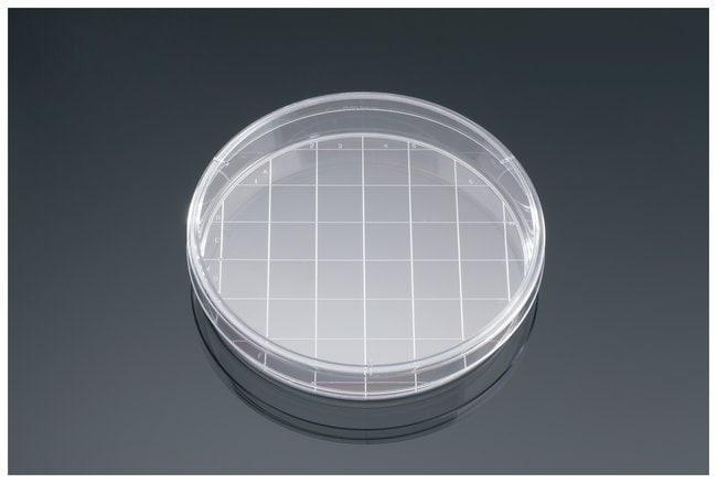 Falcon™Tissue Culture Dish with Grid
