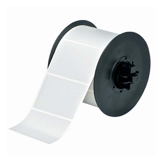Brady™BBP™ Tamper-Evident Silver Metallized Polyester Label H x W: 3 x 2 in. Brady™BBP™ Tamper-Evident Silver Metallized Polyester Label
