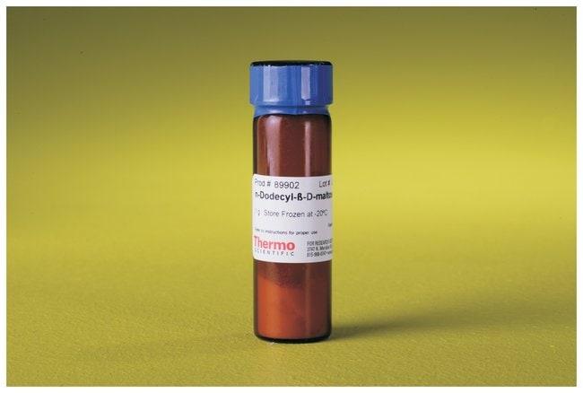 Thermo Scientific n-Dodecyl-beta-Maltoside Detergent :Life Sciences:Protein
