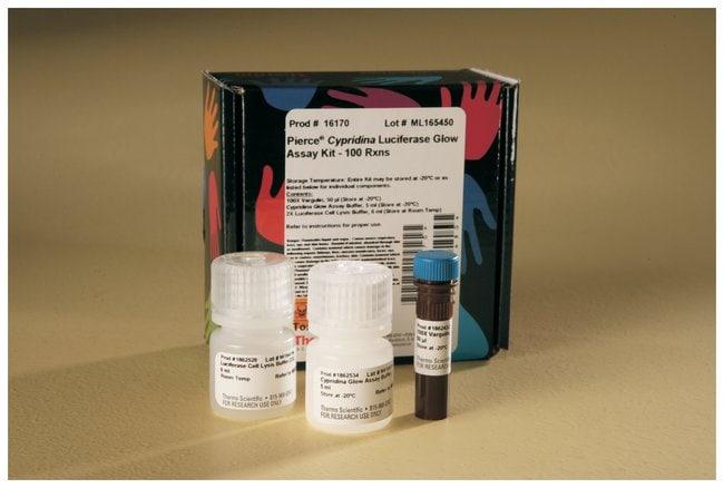 Thermo Scientific Pierce Cypridina Luciferase Glow Assay Kit:Life Sciences:Protein