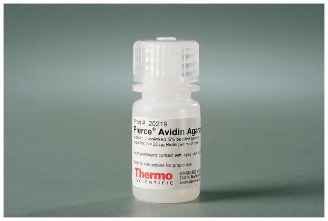 Thermo Scientific Pierce Avidin Agarose:Life Sciences:Protein Biology