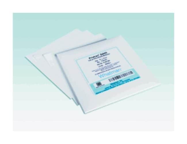 Cytiva (Formerly GE Healthcare Life Sciences)Whatman™ Protran™ Nitrocellulose Blotting Membranes: 0.45μm BA85 Protran Circles