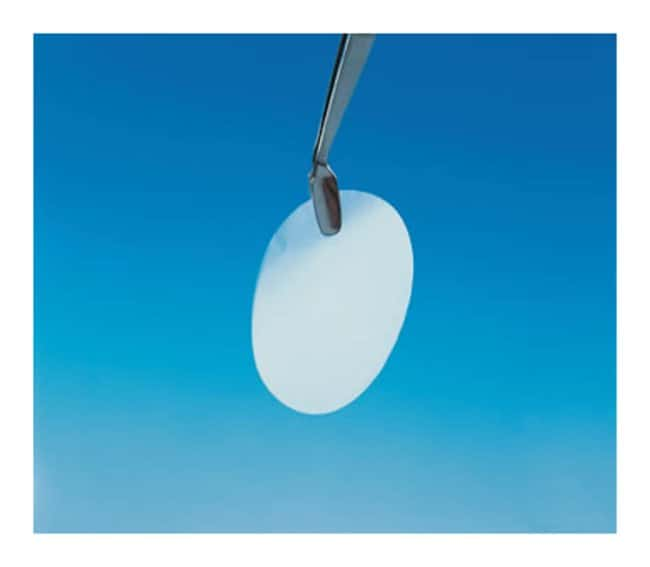 CytivaWhatman™ 25mm Nuclepore™ Polycarbonate Track-Etched Membranes: Membranes for Filtration Filtration
