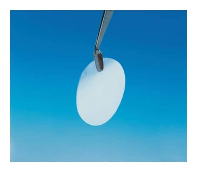 GE HealthcareWhatman™ 25mm Nuclepore™ Polycarbonate Track-Etched Membranes 0.1μm Pore Size; Dia.: 25mm GE HealthcareWhatman™ 25mm Nuclepore™ Polycarbonate Track-Etched Membranes
