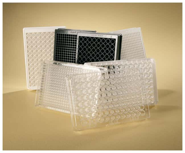 Thermo Scientific™Pierce™ High Binding Streptavidin Coated Plates: ELISA Microplates ELISA Reagents, Plates and Accessories