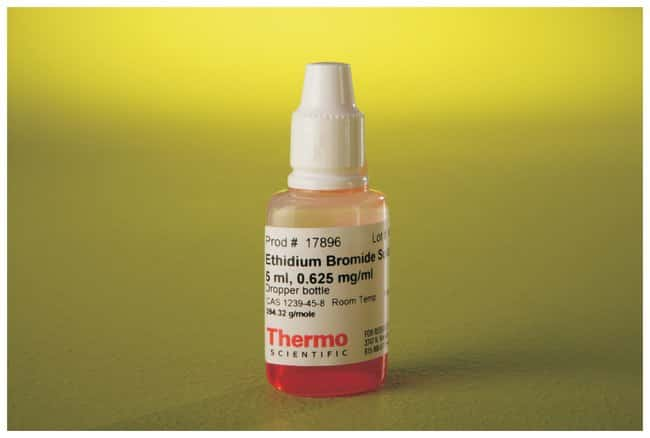 Thermo Scientific™Pierce™ Ethidium Bromide: Reagents and Columns Nucleic Acid Synthesis