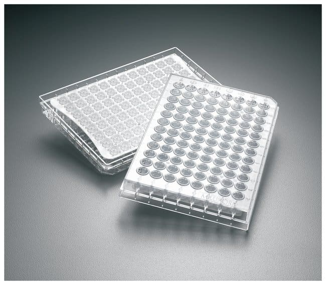 MilliporeSigma MultiScreenHTS Solubility Filter Plate:Dishes, Plates and
