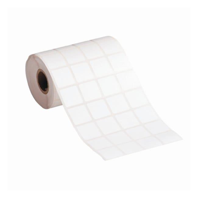 Brady StainerBondz Slide Labels 0.9W x 0.9 in. H (22.86 x 22.86mm); White;