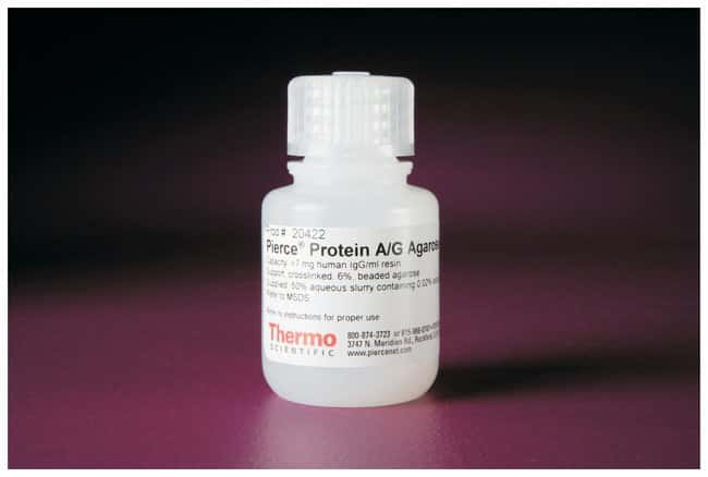 Thermo Scientific™ Pierce™ Protein A/G Agarose: Protein Resins and Kits Protein Extraction and Purification