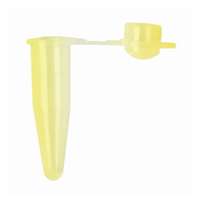 Axygen™ PCR-Röhrchen, 0.2ml, mit gewölbtem Deckel: PCR und qPCR Life Sciences