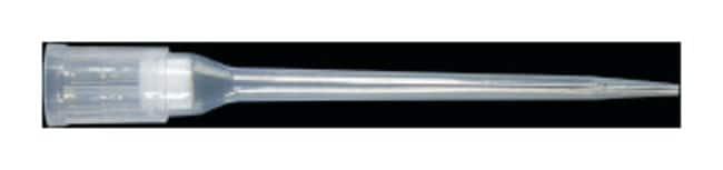 Axygen™Axygen™ Biomek™ FX/NX Roboter-Spitzen 50μl; Vorsterilisiert Axygen™Axygen™ Biomek™ FX/NX Roboter-Spitzen