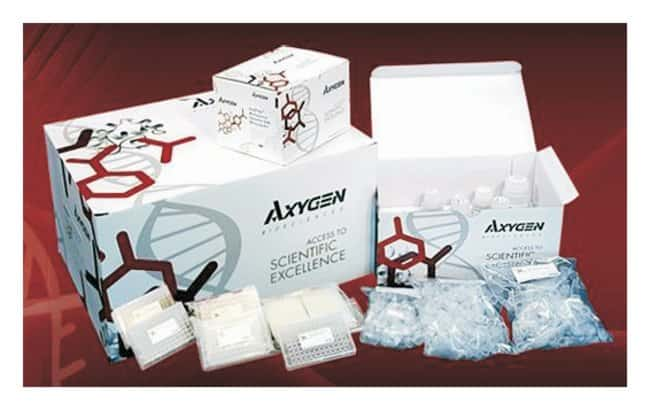 Axygen™ DNA Marker Kit