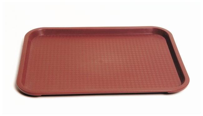 United Scientific Supplies Plastic Lab Trays Plastic Lab