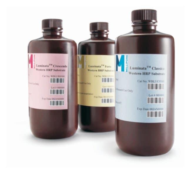 MilliporeSigma Luminata Western HRP Chemiluminescence Substrates :Electrophoresis,