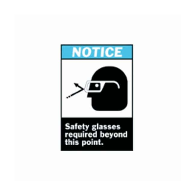Brady™ ANSI Z535 Safety Signs: Safety Glasses Required Beyond This Point